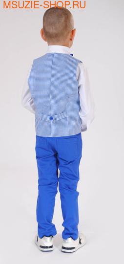 жилет+сорочка+брюки+бабочка (фото, вид 1)
