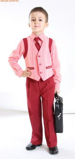 Жилет, брюки, рубашка, галстук (фото, вид 3)