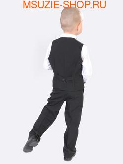 жилет+брюки+бабочка (фото, вид 1)