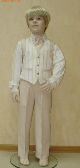 Жилет, брюки, рубашка, галстук (фото, вид 4)
