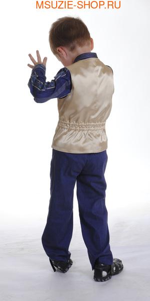 жилет,рубашка,брюки,бабочка (фото, вид 1)