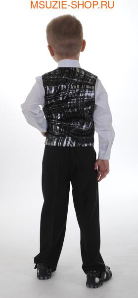 Жилет,галстук (фото, вид 1)