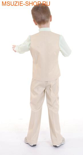 жилет+рубашка+брюки (фото, вид 1)