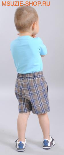 шорты (фото, вид 2)
