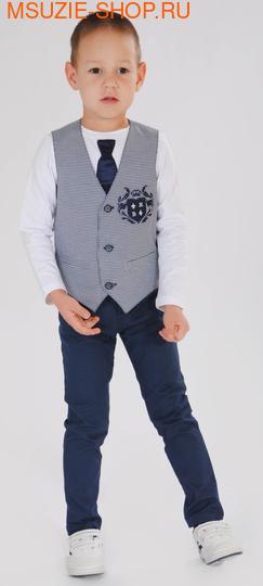 жилет+брюки+джемпер (фото)