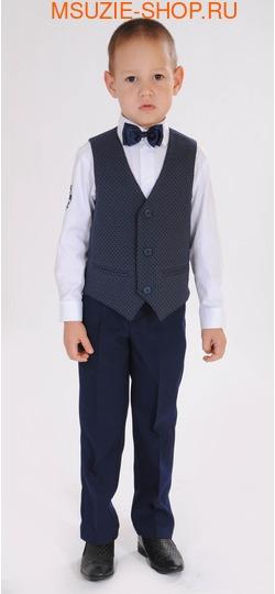 жилет+брюки+сорочка+бабочка (фото)