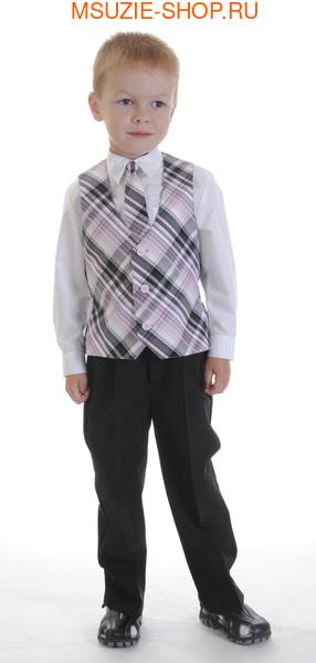 жилет,галстук (фото)