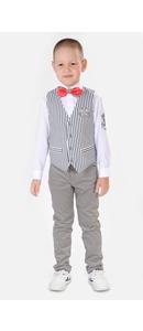 жилет+сорочка +брюки+бабочка